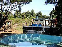 Things to do in Nadi Fiji   Nadi resorts Fiji beachside resorts