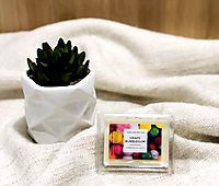 Scented Soy Melts